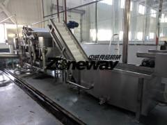 杨梅汁饮料加工生产线设备