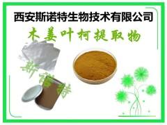 木姜叶柯粉 10:1 新资源食品 木姜叶柯粉价格