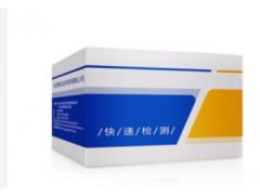 呕吐毒素荧光定量检测卡