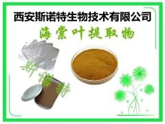 湖北海棠叶粉 新资源食品  斯诺特厂家发货