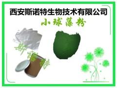 蛋白核小球藻粉 绿色粉末 主打 新食品原料