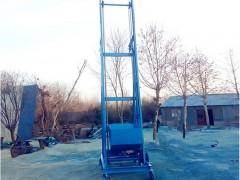 农作物钢丝绳单斗提升机 蔬菜类垂直装车输送机提升机供应