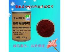 食品级葡萄籽提取物供应葡萄籽提取物