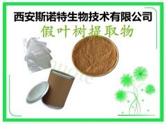 假叶树提取物粉 假叶树粉 皂甙 TLC检测 80目