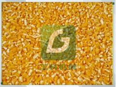 玉米脱皮制糁机价格