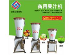厂家蔬菜打汁机8L,商用果汁机,水果打碎机电动水果榨汁机