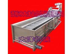 实用型辣椒清洗机 CQX型多功能黄瓜清洗设备