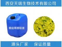 厂家批发 垂盆草浸膏 天然植物浸膏  天瑞生物