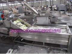 电动型百香果清洗设备 CQX型仿手工式洗菜机