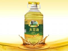 玉金香大豆油精炼非转一级大豆油5L 食用油 非转基因批发