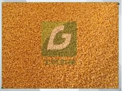 日产30吨黄豆脱皮制糁机