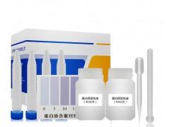 乳品中蛋白质含量速测盒(快速检测)