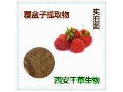 覆盆子浓缩粉药食同源 厂家生产天然提取物定做浓缩浸膏