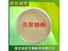 供应 优质食品级 壳聚糖酶 价格优惠