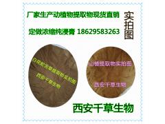 大蓟提取物专业按需定制天然浓缩低温烘焙干燥性味纯正易溶