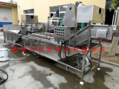 沙拉生产线 甘蓝菜鲜切清洗流水线 蔬菜清洗设备厂家