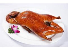 培训烤鸭的学校-茶油鸭学习班