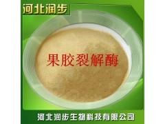 果胶裂解酶在食品加工中的应用