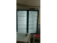 双门疫苗专用冷藏箱