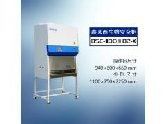 二级B2生物安全柜生产厂家-11B2型安全柜