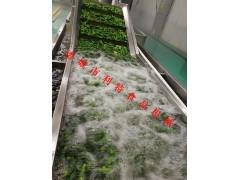 地瓜叶连续漂烫机 地瓜叶速冻加工设备 蕨菜清洗漂烫线