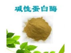 郑州宏兴食品级碱性蛋白酶 碱性蛋白酶作用