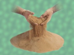 【降氨除臭】丝兰提取物降低舍内氨气浓度,改善养殖环境