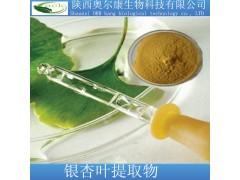 厂家现货直销 优质银杏叶提取物 银杏黄酮24    内脂6