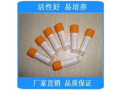 生孢梭菌[CMCC64941]