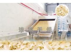 大型百合烘干机设备百合烘房烤箱网带式隧道烘干房全自动