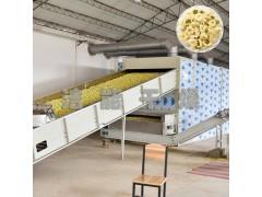 大型菊花烘干机设备菊花烘房烤箱网带式隧道烘干房全自动