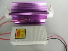 热卖10g风冷模块式臭氧配件食品车间处理消毒杀菌、除臭净化器