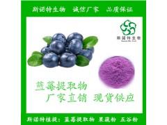 蓝莓提取物 花青素 25% 花色素 多种规格