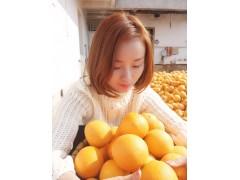 正宗赣南脐橙11月份上市产地批发招代理一件代发