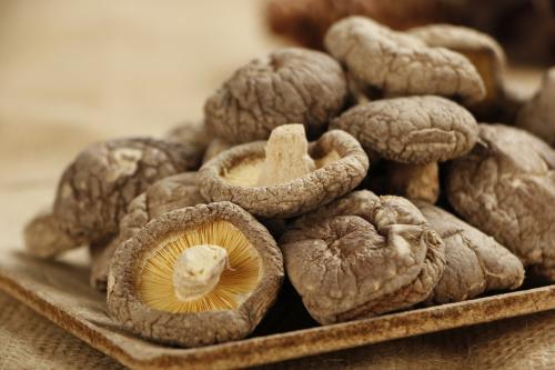 亚林 代加工香菇提取物2