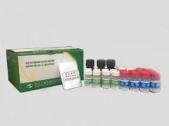 农药残留速测试剂盒