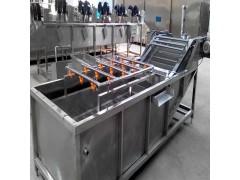 白菜清洗机厂家