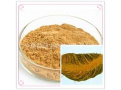 绵马贯众提取物30:1 速溶粉 提取液 绵马贯众浸膏 超微粉