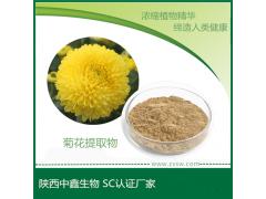中鑫生物供应菊花提取物  菊花粉