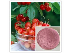 扁樱桃提取物 扁樱桃果粉 浓缩汁 速溶粉 扁樱桃多糖