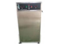 热卖高浓度50G氧气源臭氧机除甲醛异味用于水处理工厂车间
