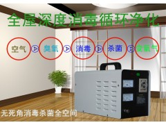 臭氧果蔬消毒机除甲醛空间消毒杀菌臭氧机汽车消毒家用消毒机