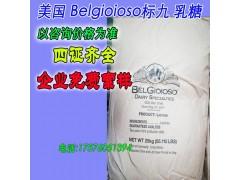 进口 美国原装乳糖 食品级Belgioioso标九乳糖