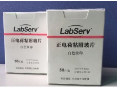 Labserv正电荷粘附载玻片,75x25mm,50片/盒