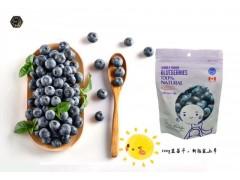 蓝莓果干100g