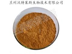 花椒提取物 50:1规格川椒粉 含足量花椒麻素