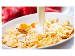 膨化早餐玉米片加工设备