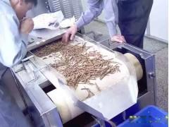 供应烟台浩铭微波中药材干燥杀菌设备 液体中药杀菌机