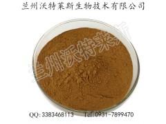石楠叶提取物 石南叶多糖 石楠叶速溶粉