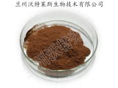 芦根提取物 芦根浸膏粉 大量库存  批发价格